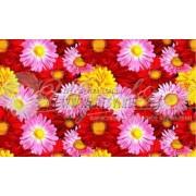 Ткань Полотенце 150 особо модный №74741
