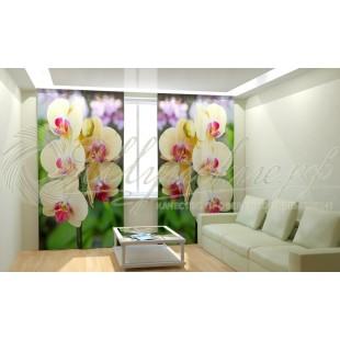 Фотошторы Желтые орхидеи фото