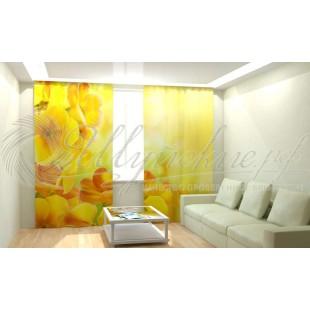 Фотошторы Солнечный цветок фото