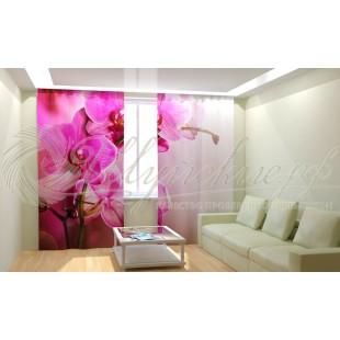 Фотошторы Розовая орхидея 2 фото