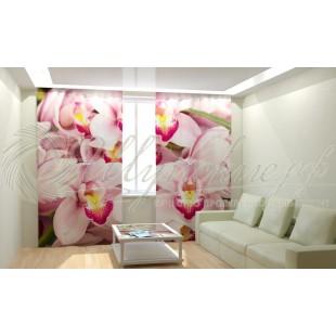 Фотошторы Манящие орхидеи фото