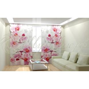 Фотошторы Ветви орхидей фото