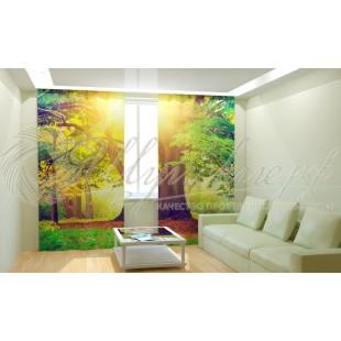 Фотошторы Солнечное дерево фото