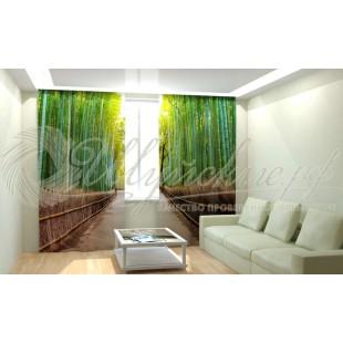 Фотошторы Бамбуковый лес фото