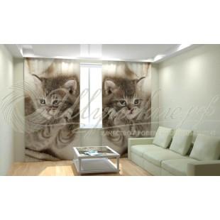 Фотошторы Дымчатый котенок фото