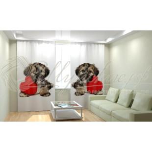 Фотошторы Собака с сердцем фото